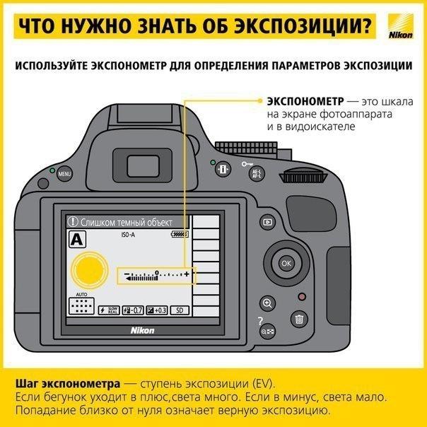 С какого фотоаппарата лучше начать начинающему фотографу
