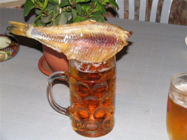 Прикольные картинки рыбка с пивом, стихами про