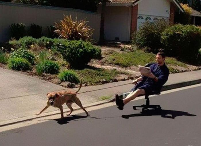 Картинки гуляем с собакой прикольные