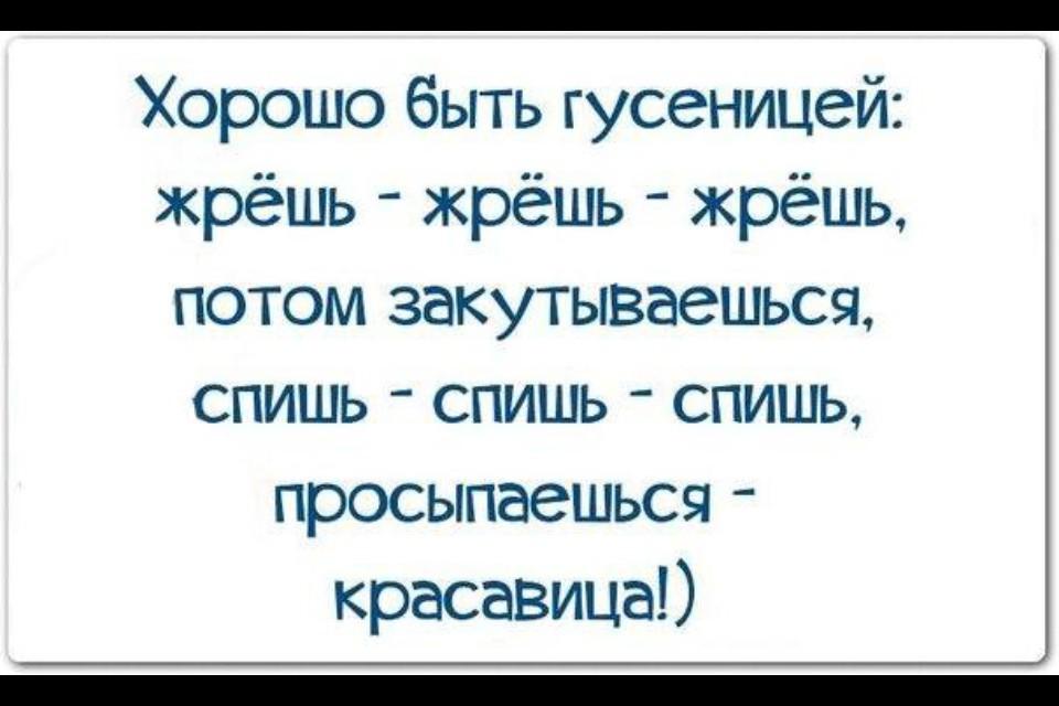 https://cdn.fishki.net/upload/post/201503/07/1455189/15_image.jpg