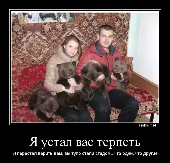 русские на медведях демотиватор подобранная прическа это