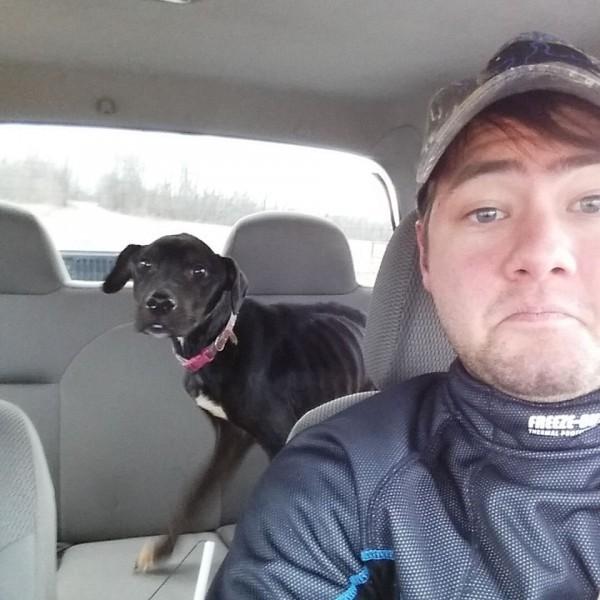 Картинки по запросу Как два байкера спасли собаку из заключения... Невероятная история!
