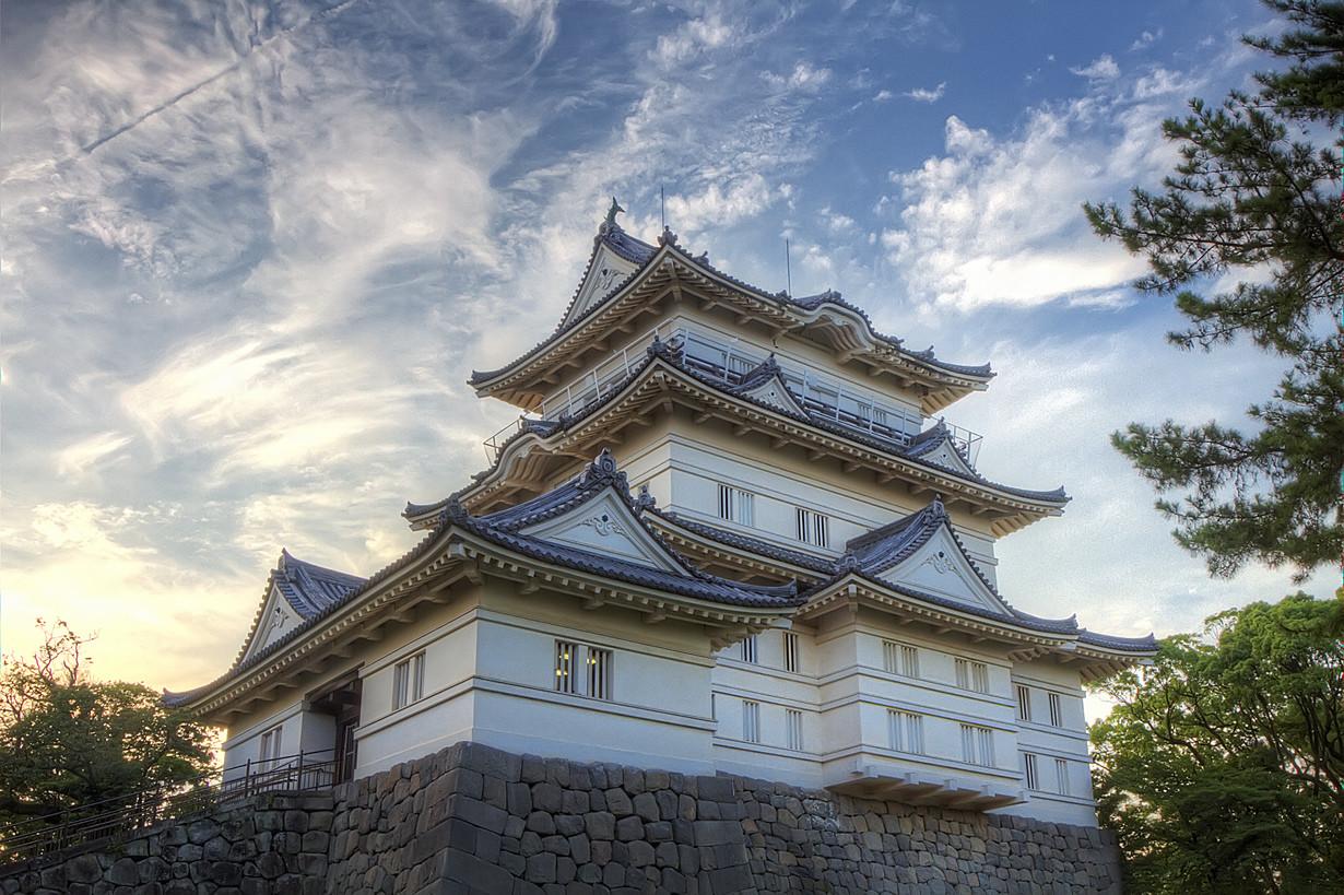 кажется, японский замок картинка недавно адениум мини