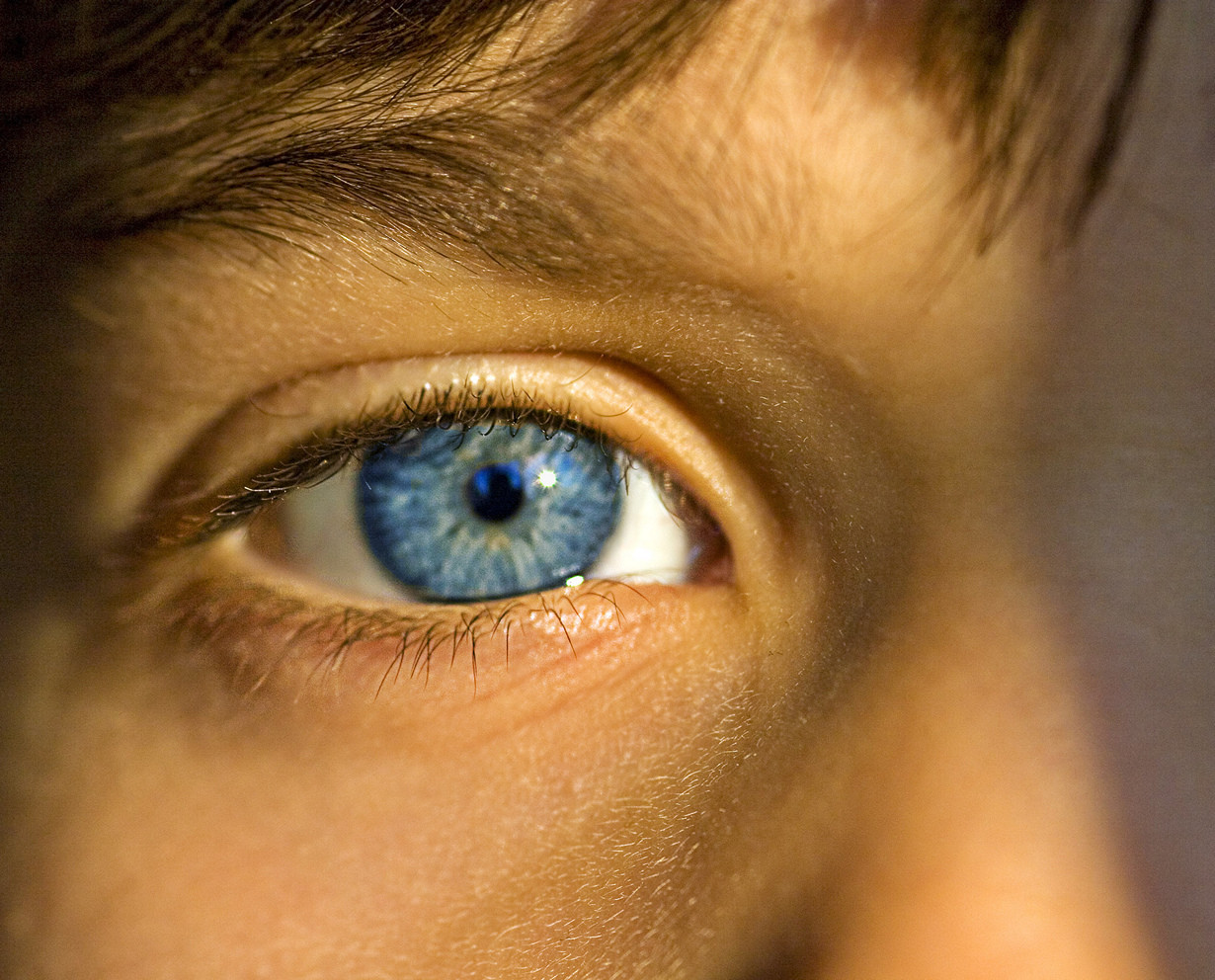 blue eyed experiment Social psychology - blue eyes vs brown eyes jane elliot film analysis both genders were considered an in the robber's cave experiment.