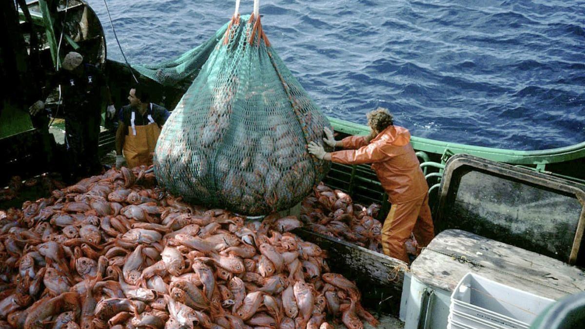 Ловля рыбы в атлантическом океане