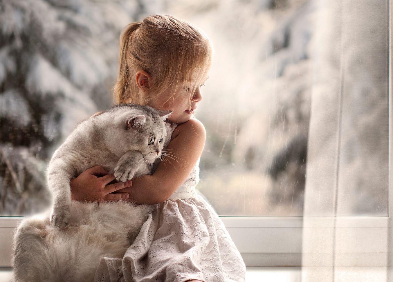 количество дешевой картинки кот и малышка самые