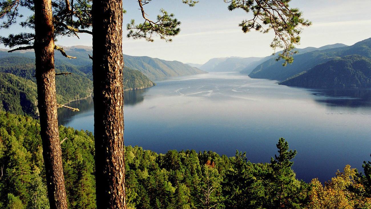 национальных парков и заповедников России которые нужно посетить Алтайский заповедник Национальные парки заповедники отдых природа россия туризм