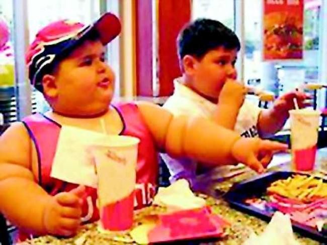 mcdonalds causes obesity Causes of obesity had the plaintiffs pursued this case against four fast food chains, they would have had a harder time drawing the requisite causal relationship.