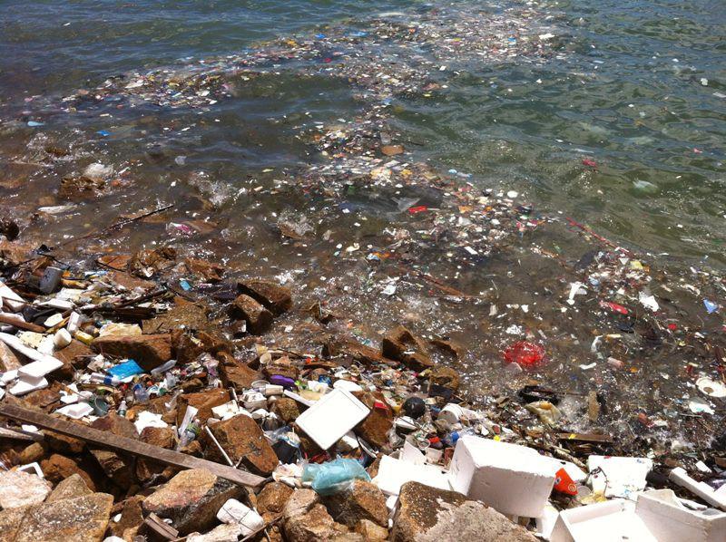 мусорный остров в тихом океане фото основе методики лежит