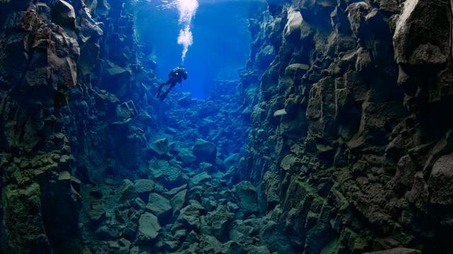 9. Длиннейшая в мире горная цепь располагается на дне океана. Срединно-океанический хребет, пересекающий центр Атлантического океана, достигает 40 000 км в длину. В нём имеются горные пики намного выше вершин Альп.  морские обитатели, океан, ужасы