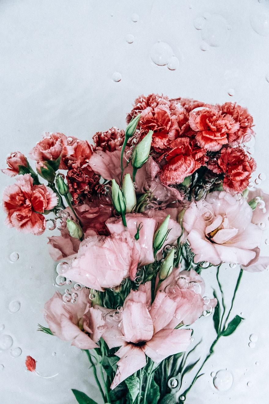 Сексуални цвети кино