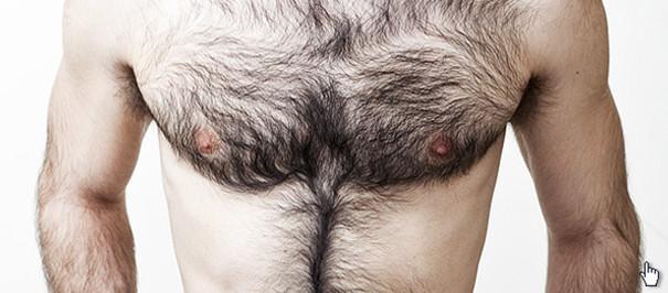 Как девушки относятся к волосатой мужской груди 10