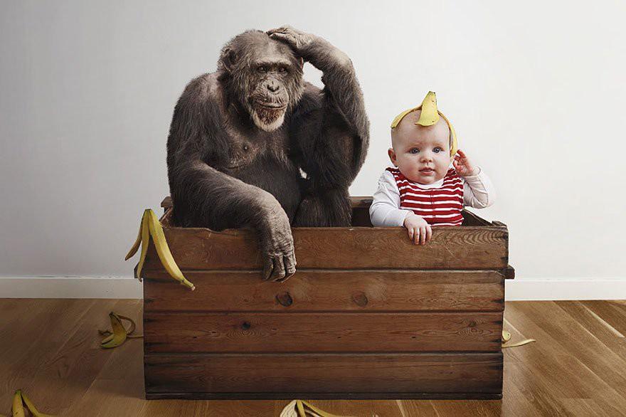 Пенсионного, разные смешные картинки с детьми