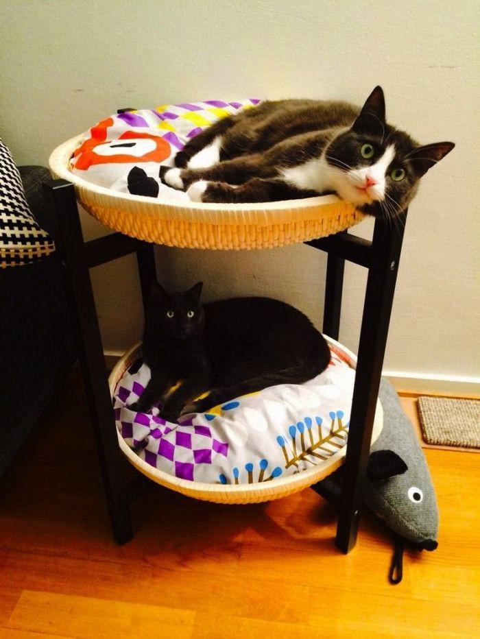 flea tablets for cats asda