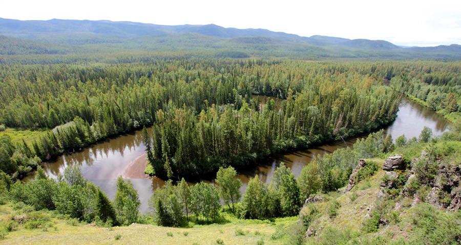 любят оральные тоджинская котловина фото лес природа судорожно