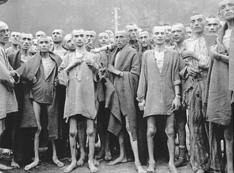 auschwitz the german nazi concentration camps