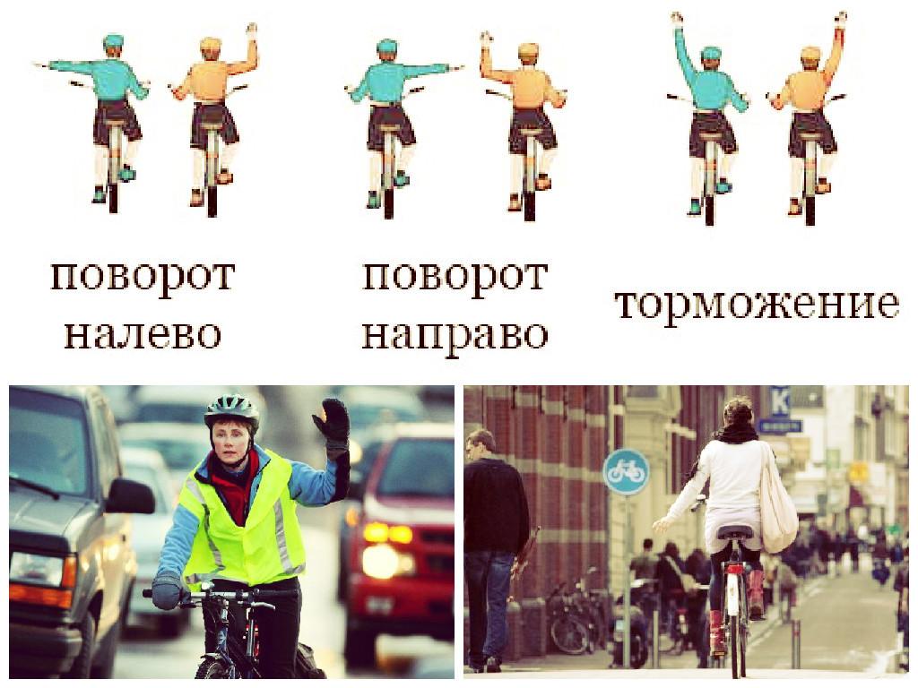 Марта для, сигналы велосипедиста на дороге в картинках