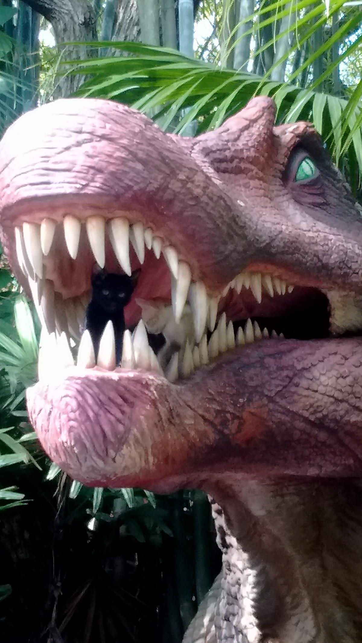 Фотографии для, динозавры картинки приколы
