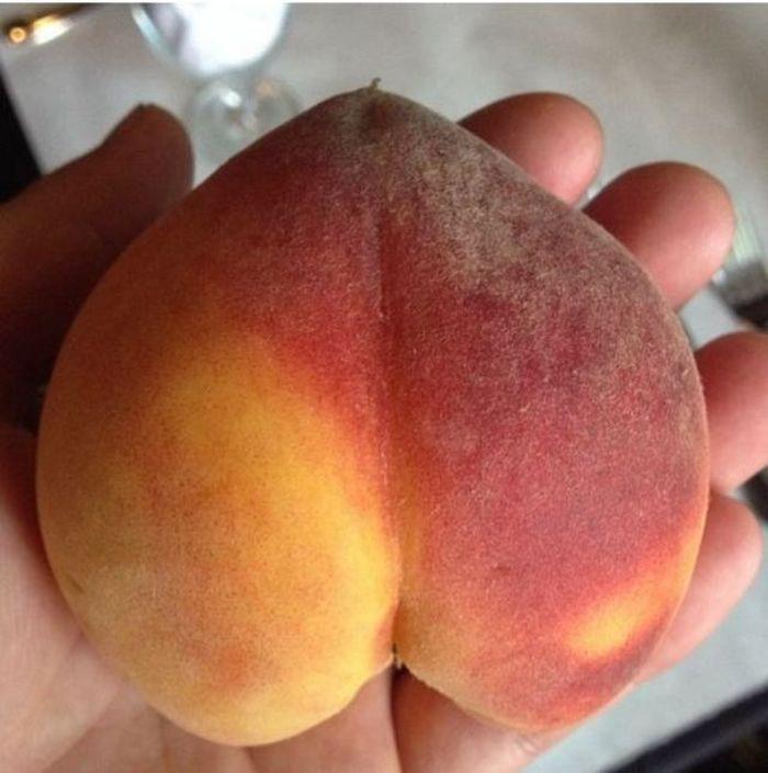 не а персики сиськи ну