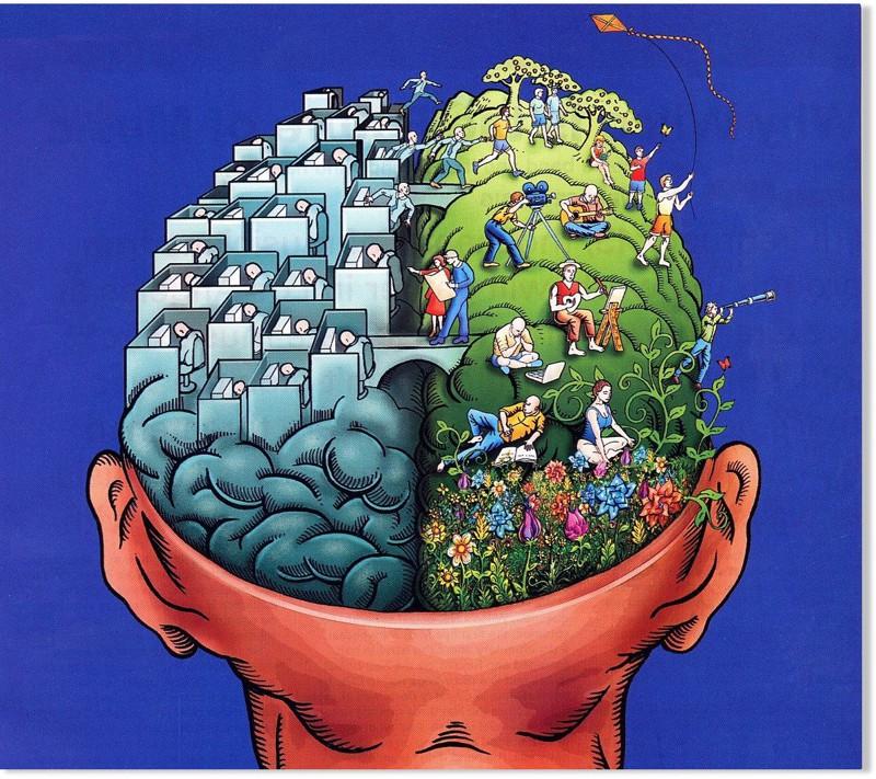 1. Человеческий мозг принимает 11 миллионов бит информации в секунду, но осознает лишь 40 бит интересное, факт