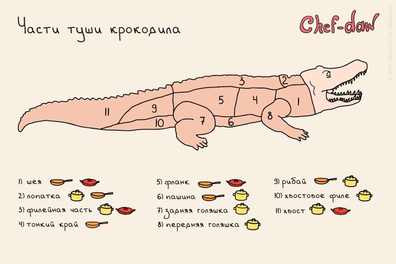 http://cdn.fishki.net/upload/post/201507/10/1592383/tn/18222260-r3l8t8d-1000-53939_original.jpg