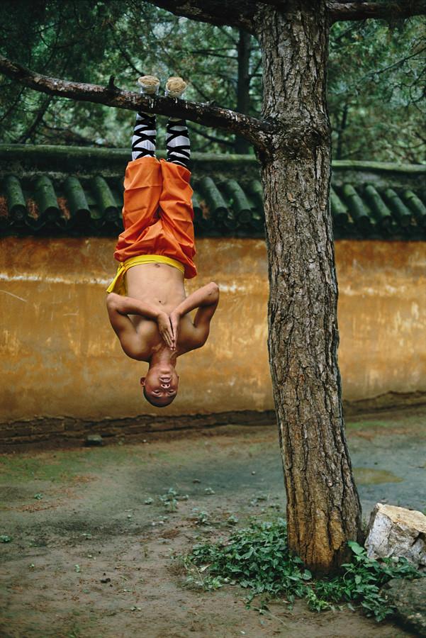 Смешные фото с йогами
