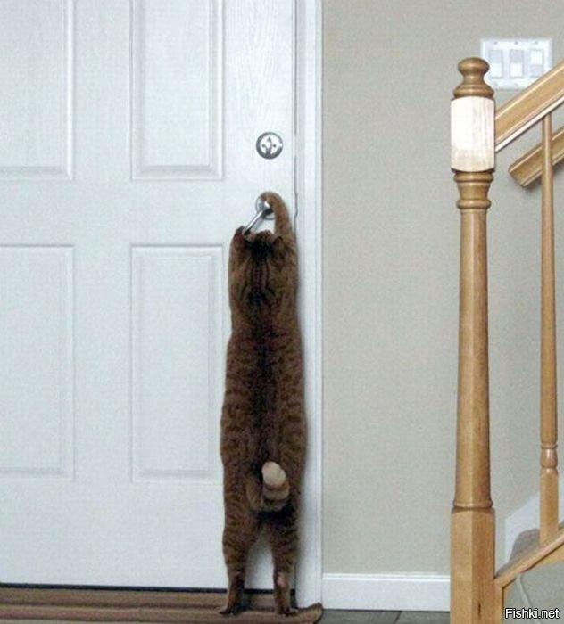 дверь незапертую знакомый стук потревожит не мою