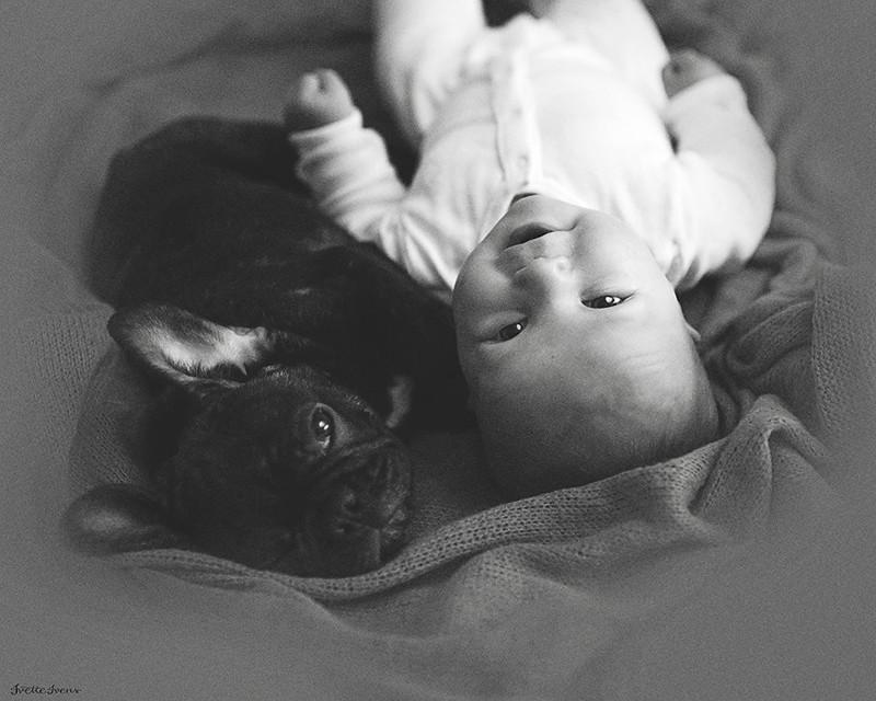 Младенец и бульдог, родившиеся в один день, дружат крепче, чем братья дети, дружба, животные, собаки
