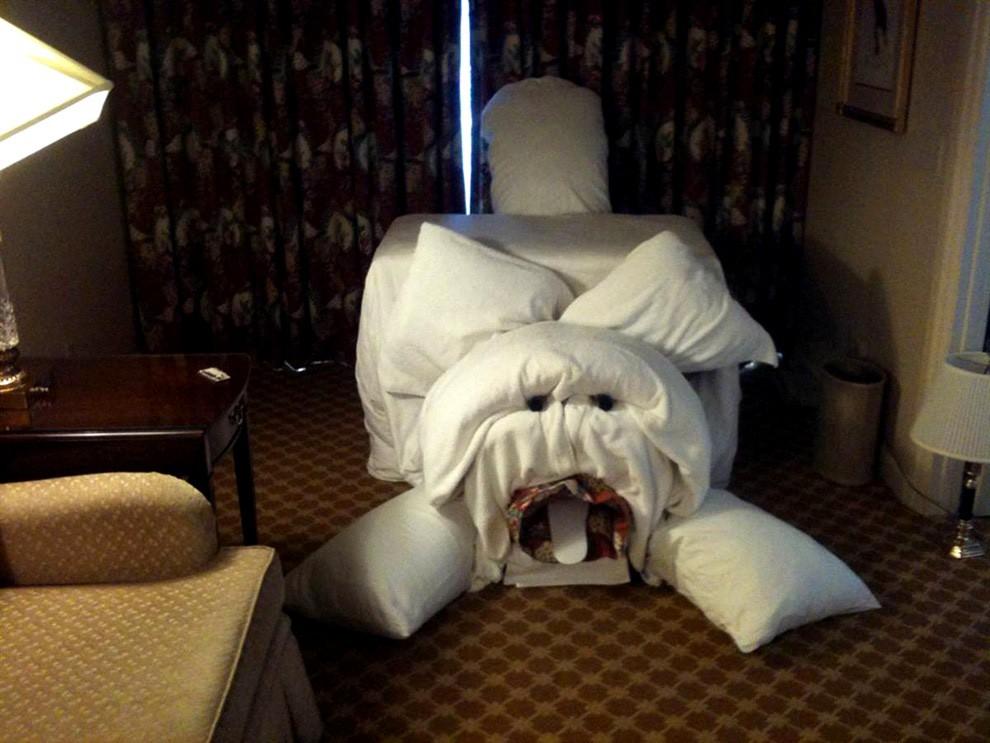 Приколы про гостиницы картинки