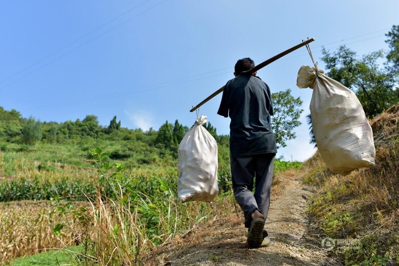 Потрясающая сила духа люди, уход, фермер