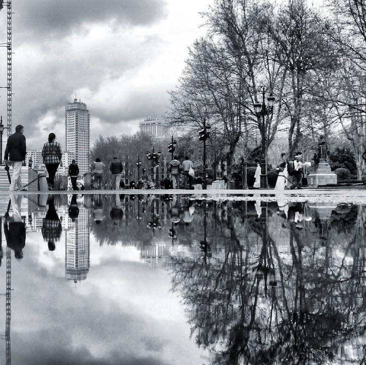 3. Урбанизм и природа в Мадриде лужа, отражение, фото