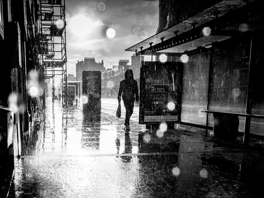 картинки черно белые дождь проспекты посадки