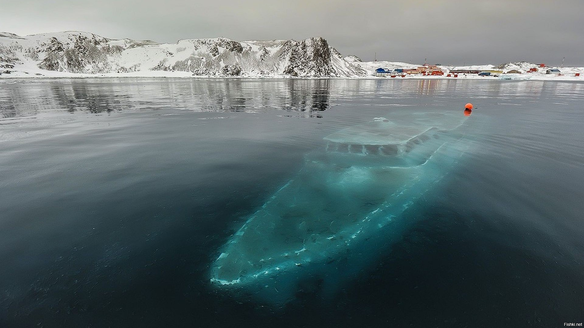 Atka Bay, Weddell Sea, Antarctica загрузить