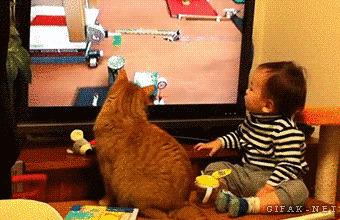 7. Они всегда рады посмотреть с вами телевизор