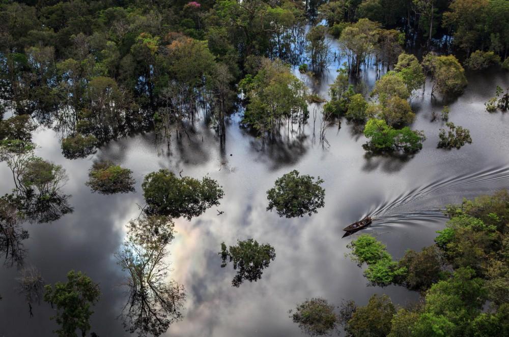 1. Бразильский национальный парк Anavilhanas красиво, природа, факты
