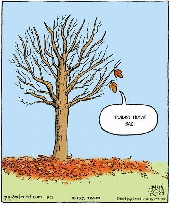 Картинки прикольные осень пора на юг