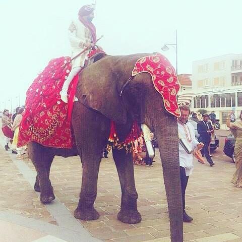 Свадебная церемония Индийская свадьба, блеск, индия, роскошь, традиции