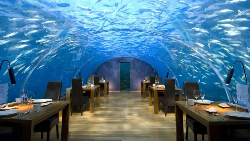 11. Подводный ресторан Ithaa Undersea Restaurant интересное, мир, ресторан