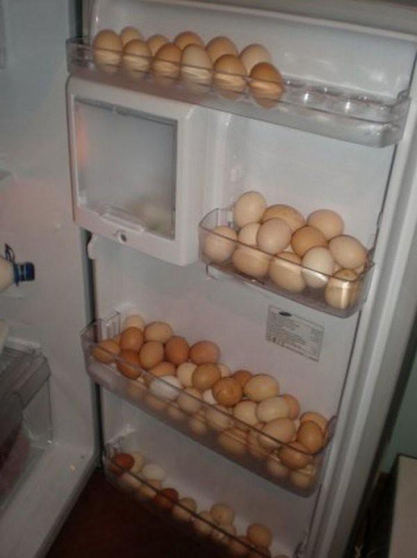 Обычно, после выходных, холодильник забит привезенными из дома продуктами  еда, прикол, студенты, юмор