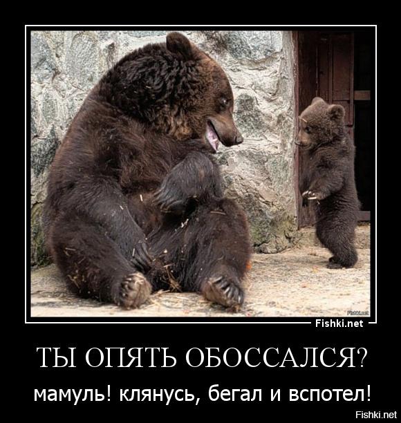 глорихантеров существует статус картинка медведь считаю