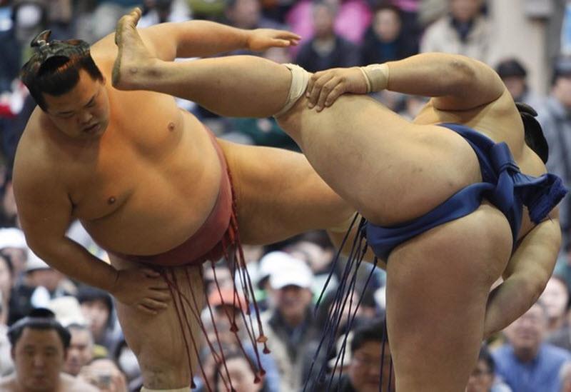 Современное сумо