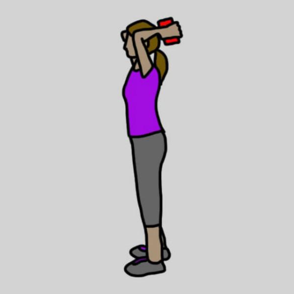 Сгибания рук с консервной банкой советы, упражнения