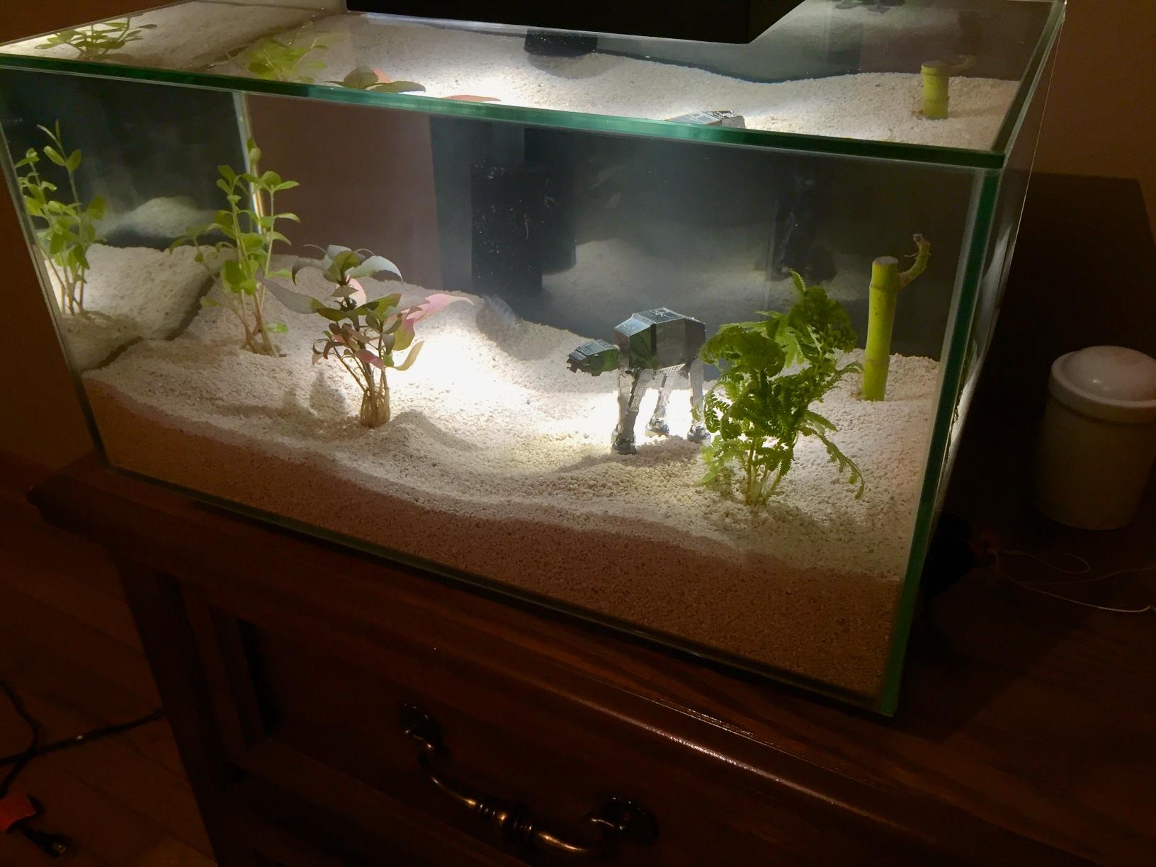 нашей смешные картинки про аквариумы сего факта
