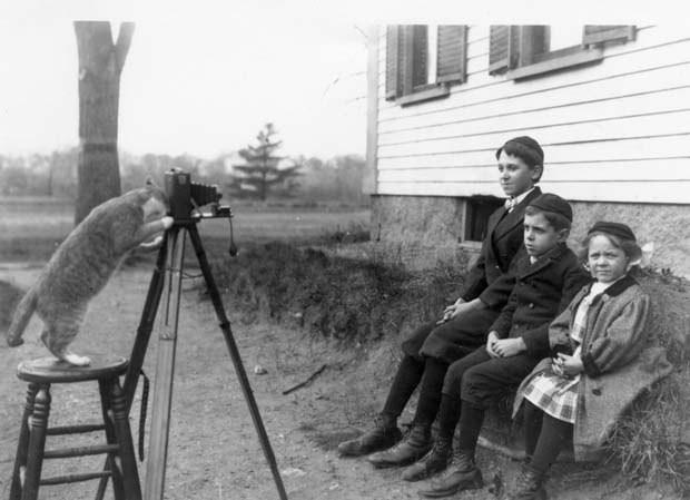 Семейный портрет, 1909 г интересно, история, фото