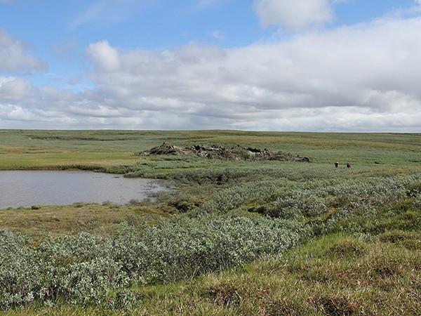 Приблизительно в то же время на другой стороне полуострова образовалась еще одна воронка, схожая с первой, но меньшего размера: воронка, неизвестное, сибирь, ямал