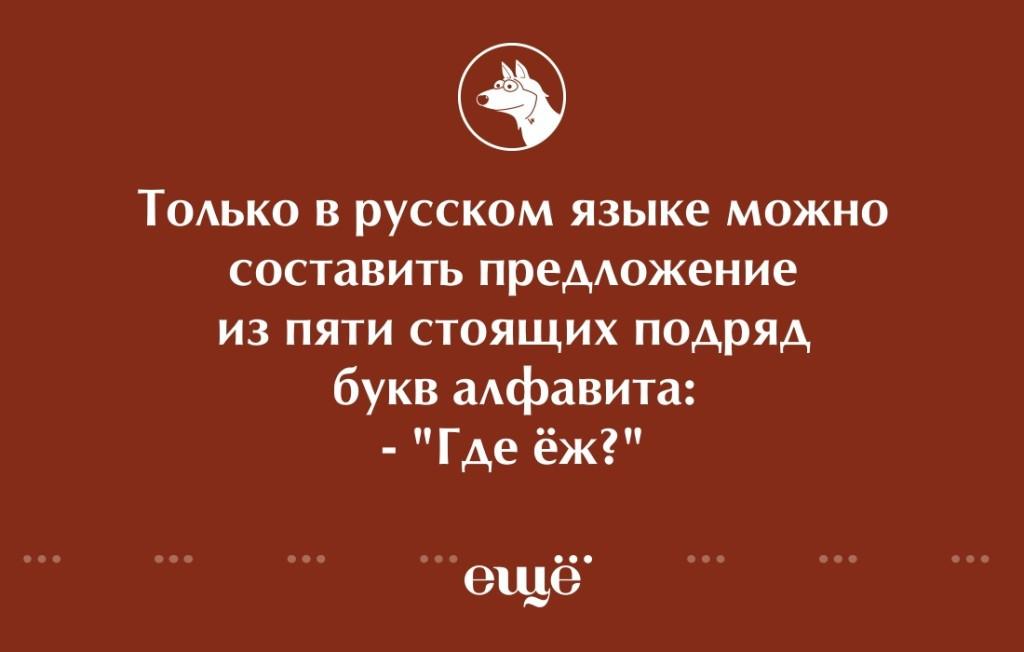 Русский язык картинки смешные