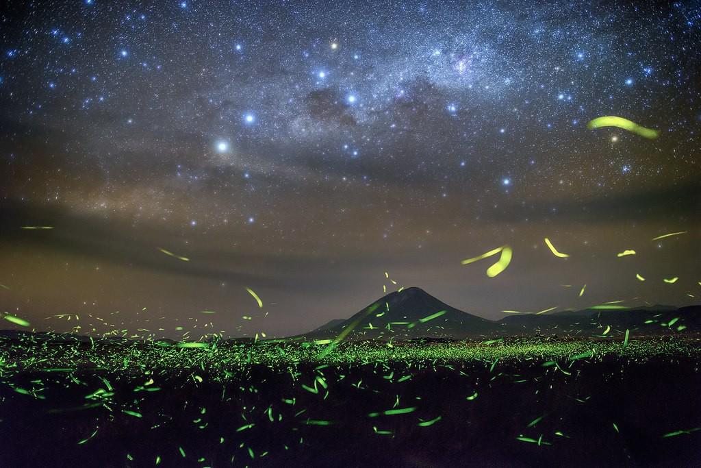 Картинки звезд и светлячков