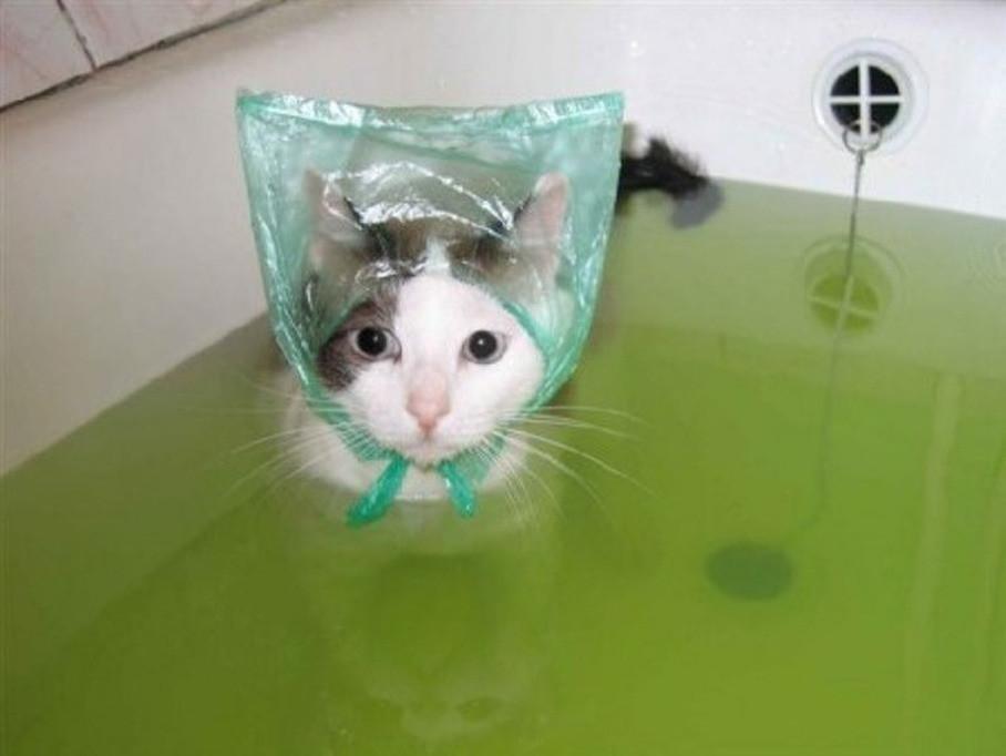 Мокренькая киска в ванной, пришел к молодой соседки в гости и трахнул