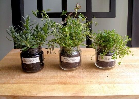 6. Вырастите травы, даже если у вас нет своего сада банка, идея, поделка