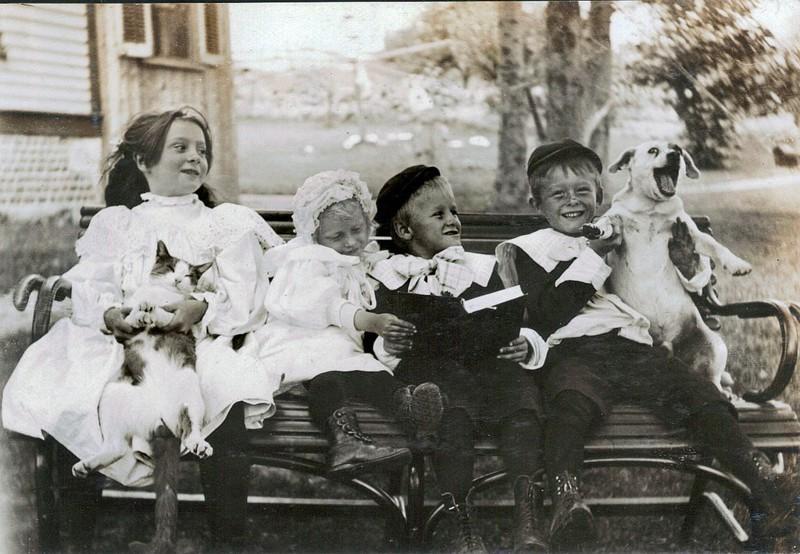 дополнением женской имеют ли очень старинные фотографии ценность неблагополучной семьи